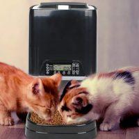 Novidades tecnológicas para pets