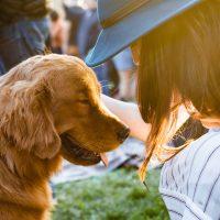 Ter um animal de estimação reduz a sensação de solidão, aponta estudo