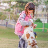Os cachorros são os melhores amigos das crianças